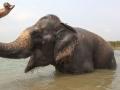 Chitwan-National-Park-4.jpg